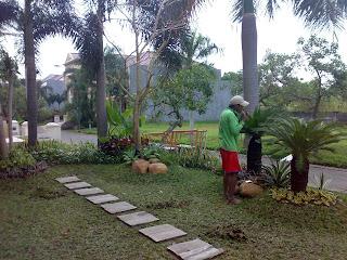 Tukang Taman Surabaya, Taman minimalis