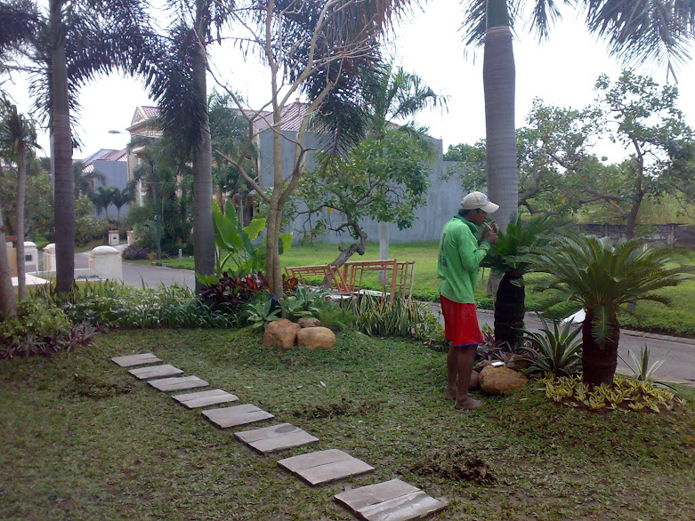 Taman minimalis   www.tukangtamansurabaya.co.id