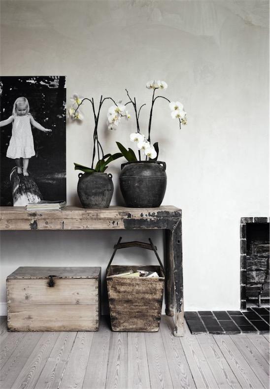 orquideas blancas chicanddeco