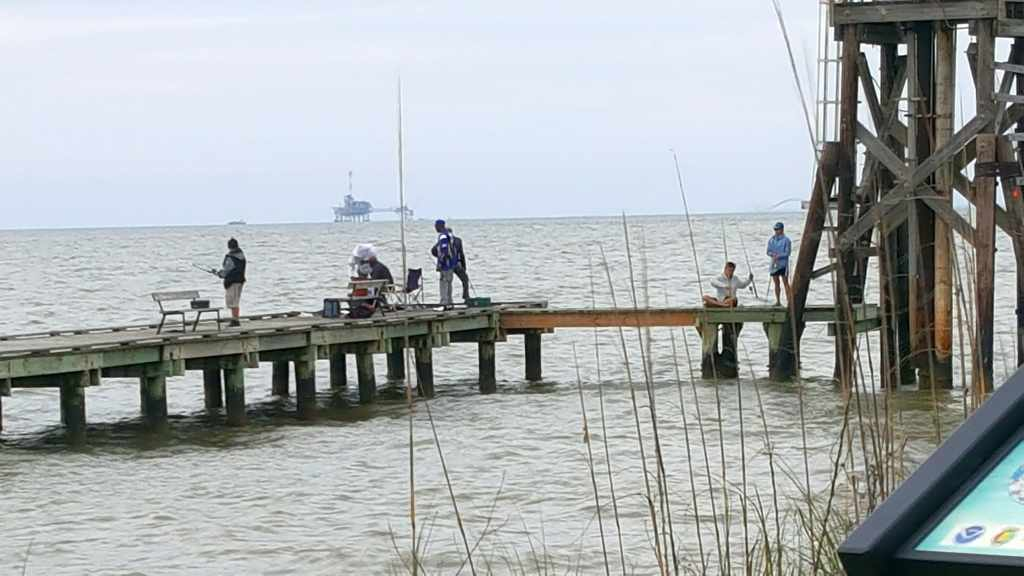 Dauphin island jetty fishing article tue 14 mar 2017 for Dauphin island fishing pier