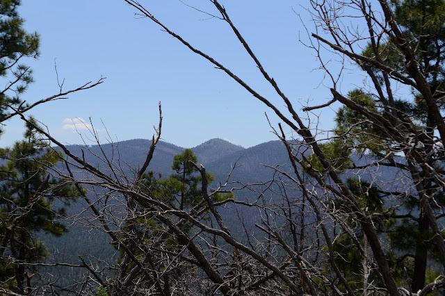 from around Buzzard Peak