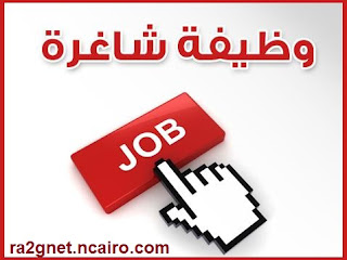 Jobs in Egypt وظائف مصر