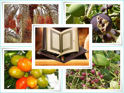 fruit names mentioned in qur'an
