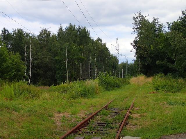 Pozarastany przejazd gdzieś na Nikiszowcu