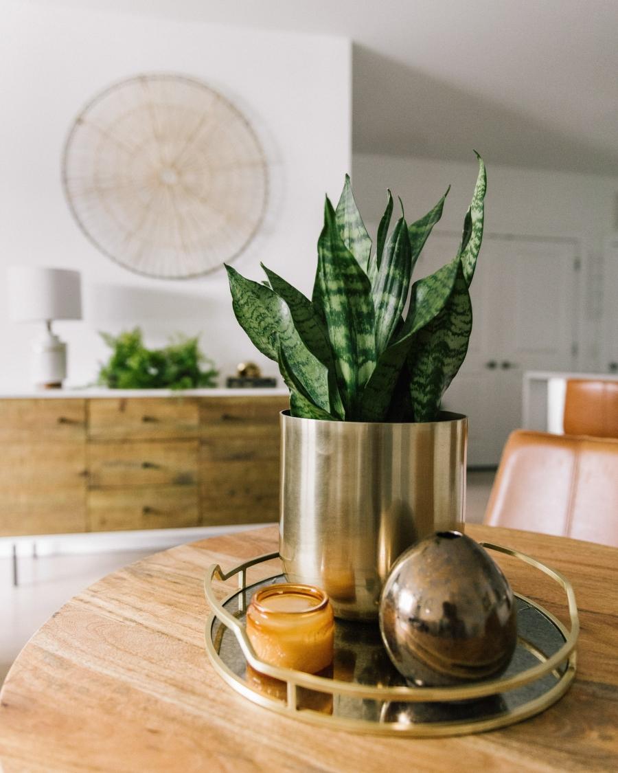 Prosty apartament w klimacie feng shui, wystrój wnętrz, wnętrza, urządzanie domu, dekoracje wnętrz, aranżacja wnętrz, inspiracje wnętrz,interior design , dom i wnętrze, aranżacja mieszkania, modne wnętrza, naturalne materiały, minimalizm, rośliny, białe wnętrza, salon, living room,