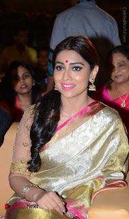 Actress Shriya Saran New Images in Silk Saree at Gautamiputra Satakarni Audio Launch  0031.jpg