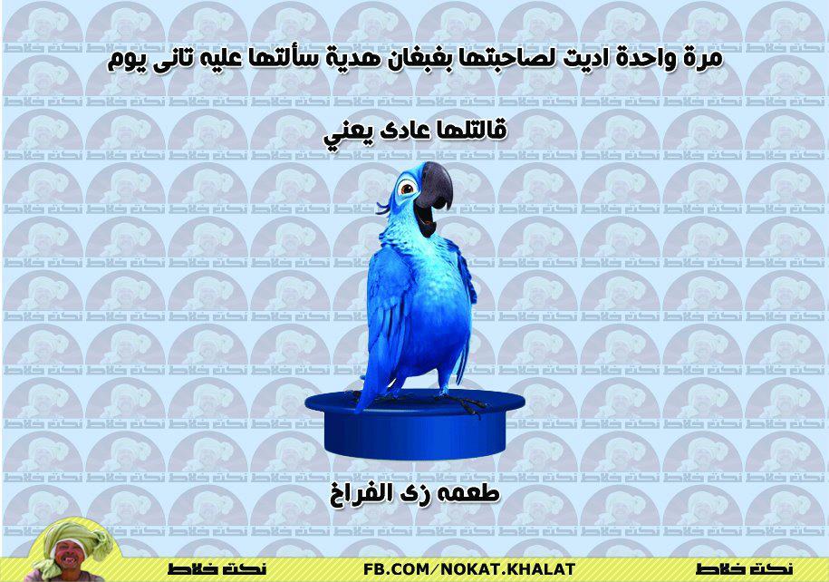 db9b4ac94 نكت مصرية جديدة نكت 2013 - نكت جديدة
