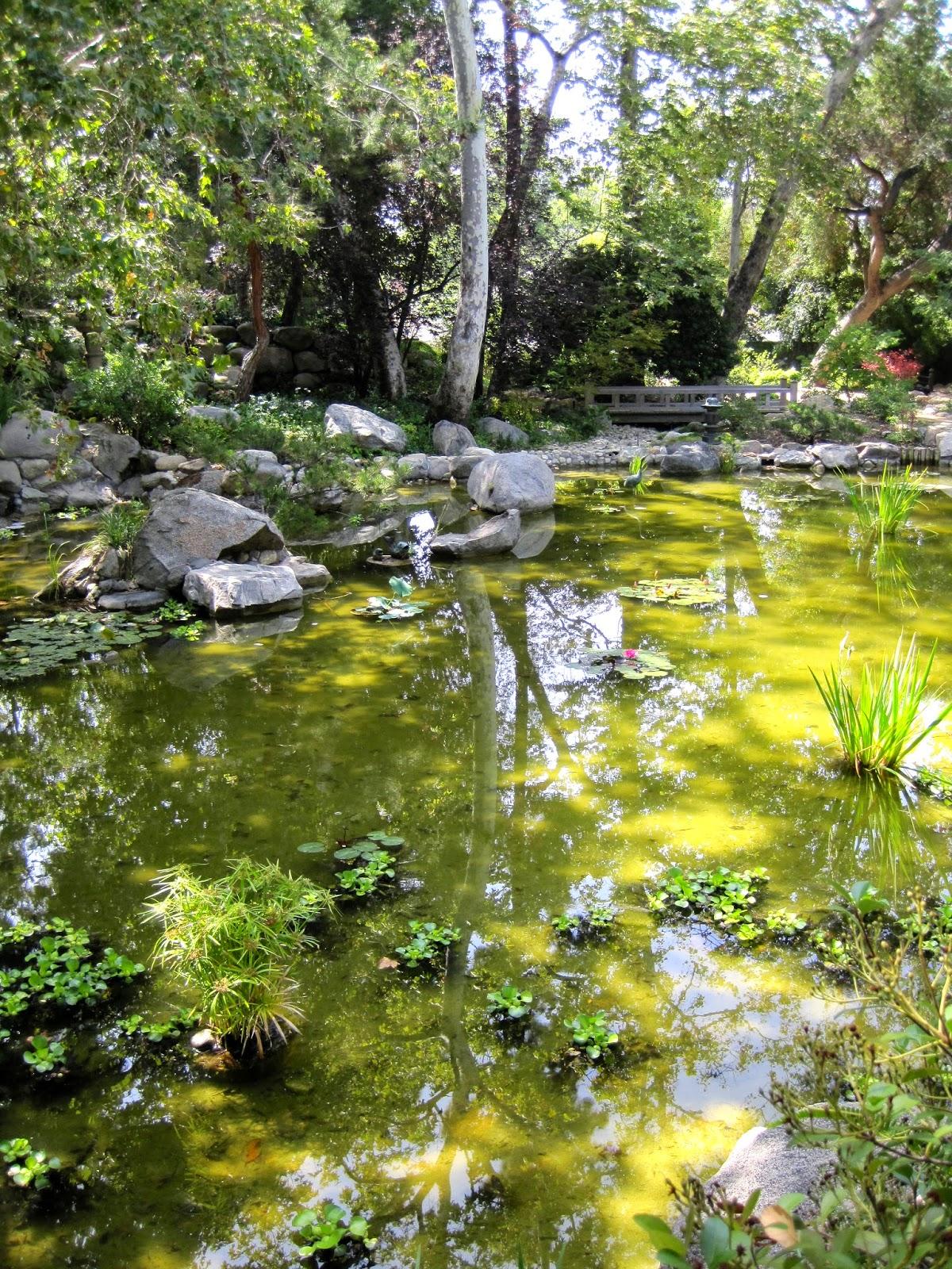 Sherry Schmidt Watercolors: A Japanese Garden