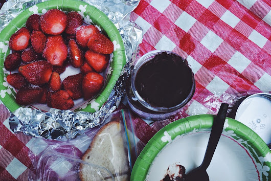 picnics and whatnot + 100 FOLLOWERS