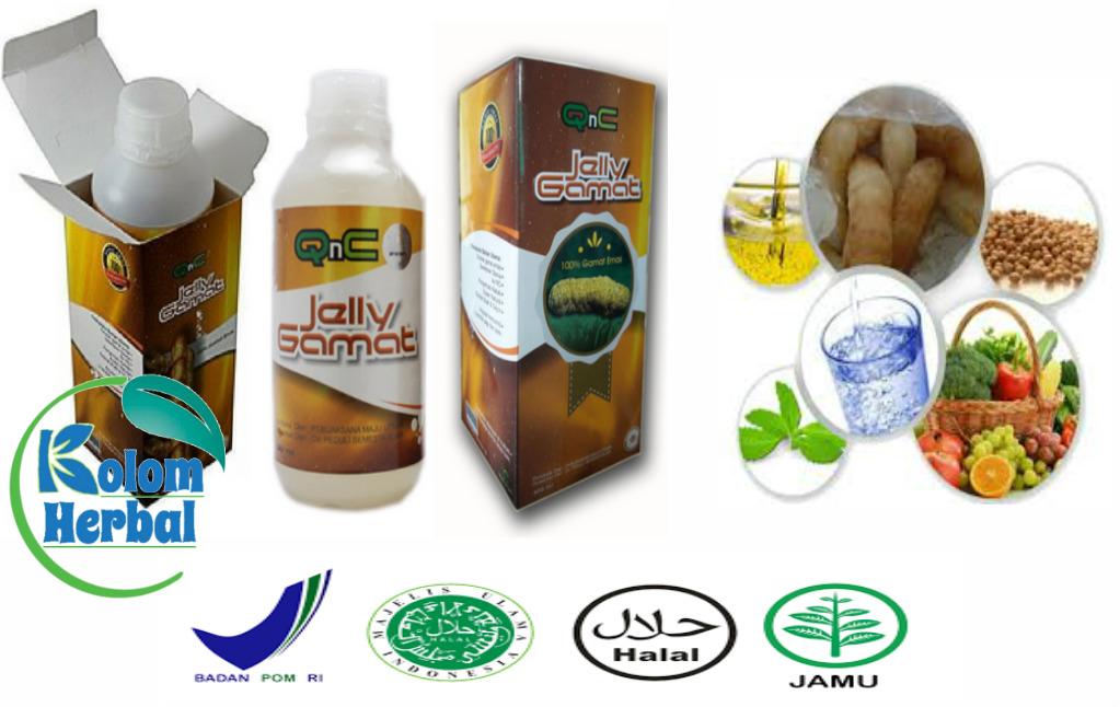 Pengobatan Tradisional Penyakit Ginjal Bocor