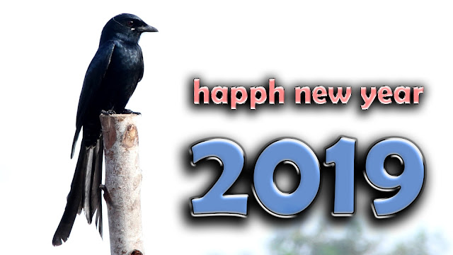 happy new year happy new year song 2019