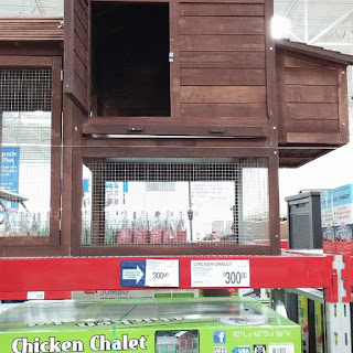 Sams club chicken coop