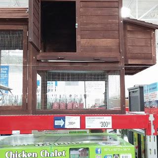 Sams club chicken coop