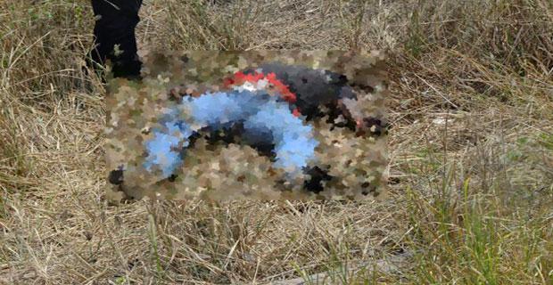 Cadáver de un joven con un tiro y en estado de descomposición hallado en Lara