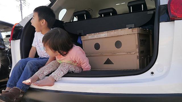 【預購】日本限定版 紙箱人阿楞化身摺合式收納膠箱