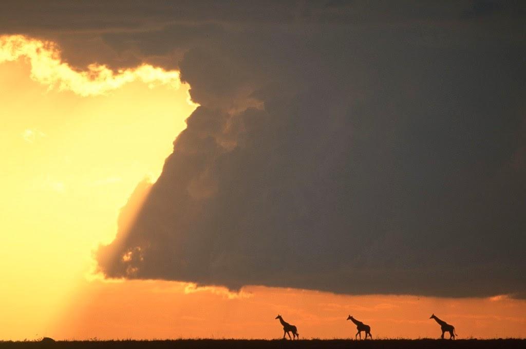 أجمل صور غروب الشمس
