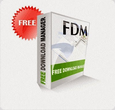 Cara Download Video Flash Dengan FDM