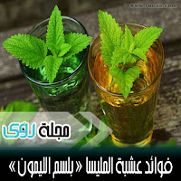 استخدامات و فوائد عشبة المليسا ( بلسم الليمون )