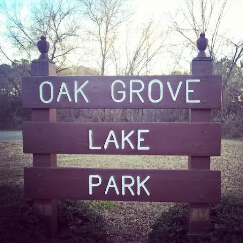 Park Day OOTD