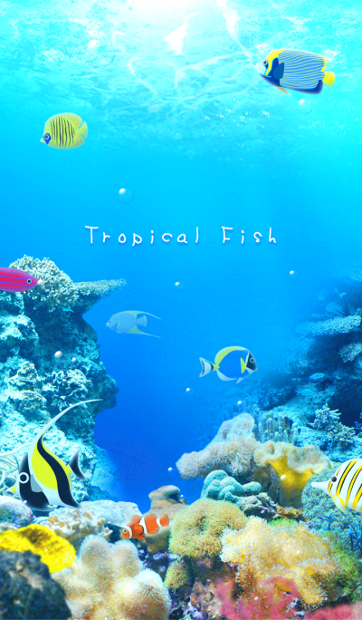 - Sea of Tropical Fish -