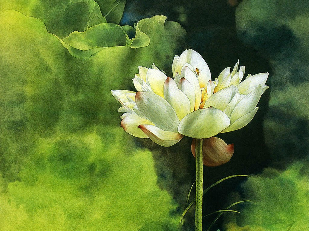 High resolution flower themes background frame - High resolution watercolor flowers ...