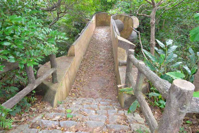 stone trail,bridge,handrails, forest