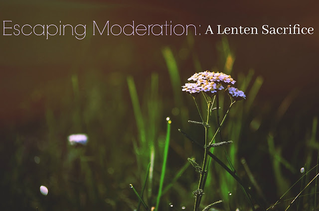Escaping Moderation: A Lenten Sacrifice