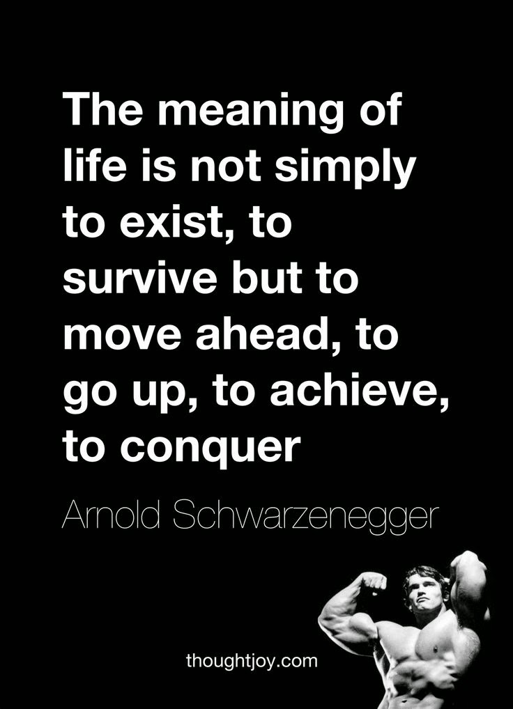 Morably — Arnold Schwarzenegger Quotes - 11 photos