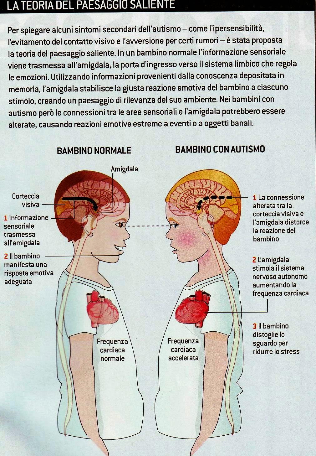 Didattica e cervello rizzolatti nell autismo i neuroni empatici sono solo bloccati - Neuroni a specchio ...