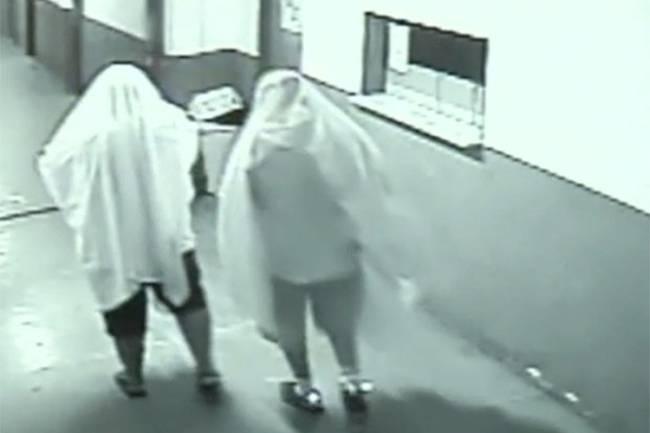 vestidos de fantasmas furtam prefeitura