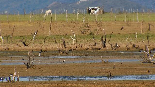 Resultado de imagem para Maior reservatório de água do NE deve chegar a zero no fim de 2016