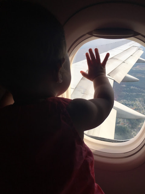 Infant looking out airplane window