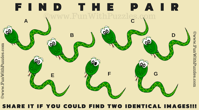 This is an easy Find the Pair Puzzle in which you have to find the matching snake among the given 7 snake images
