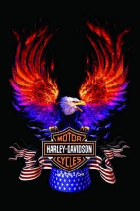 THE MOTORCYCLE: New Harley Davidson Wallpaper Android