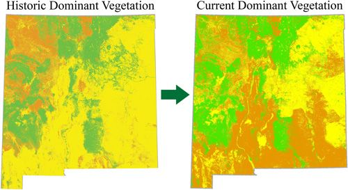 New Mexico dominant vegetation type