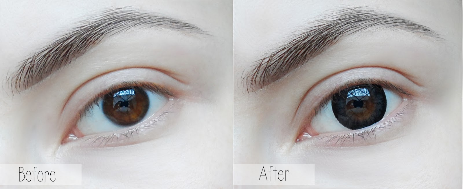circle color lens blogger review enlarging eyes doll eyes anime eyes liz breygel blogger review
