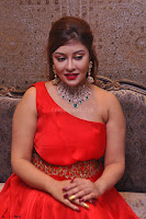 Payal Ghosh Looks Stunning in Red Half Shoulder Gown 019.JPG