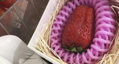 Buah Stroberi Kokota - Sekitar Dunia Unik