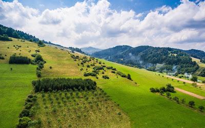 beautiful green hills widescreen hd wallpaper