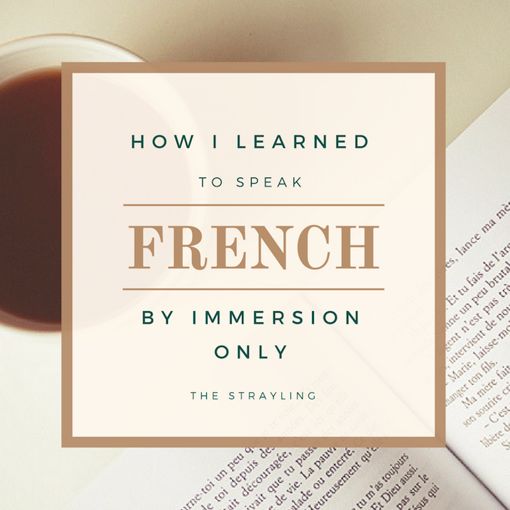 How to learn French by immersion only
