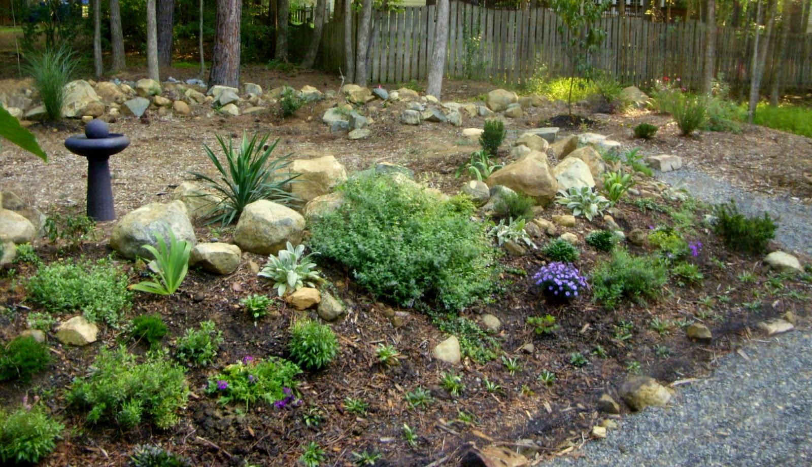 White Facing Weed Sweet Home And Garden Carolina
