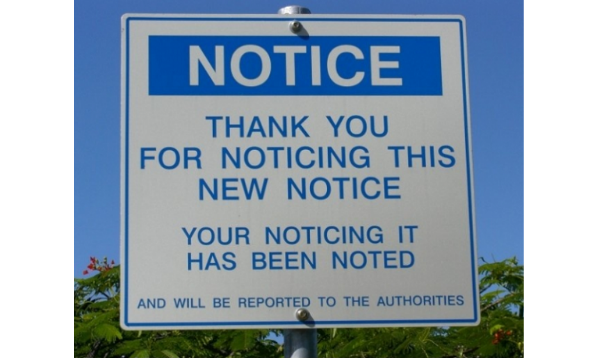 Notice the Notice About Noticing