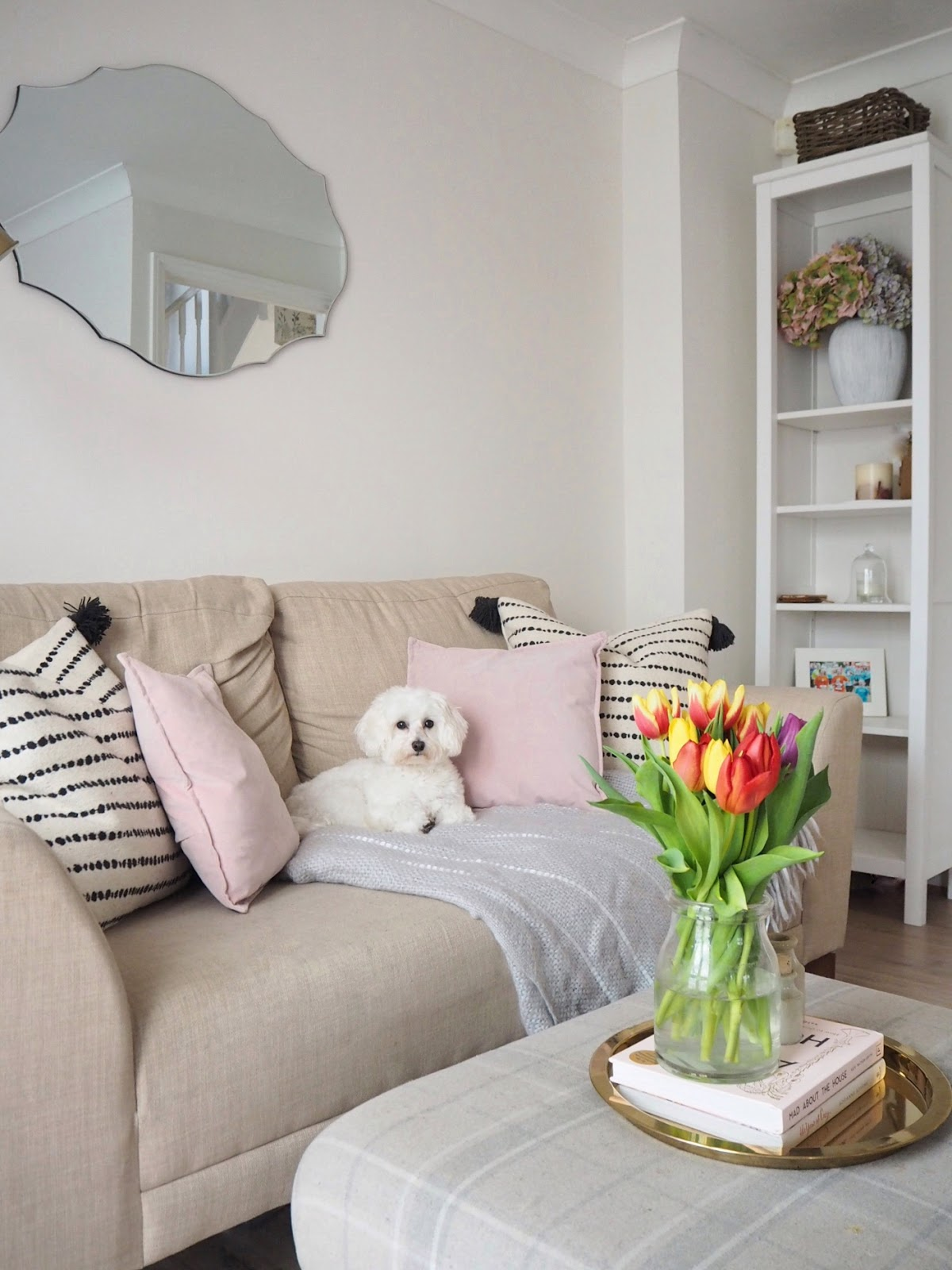 Tips on how to maximise space and solve storage issues in small homes, houses, living spaces, flats and apartments. Storage solutions in small homes.
