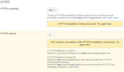HTTPS availability is being process, we need to wait a few moment and refresh the page