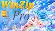 WinZip Pro 6.5.4149 For Mac