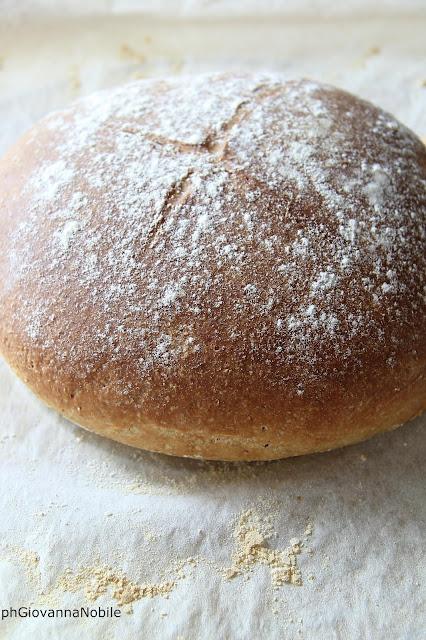 Pane integrale # 5 preparato con lievito madre essiccato
