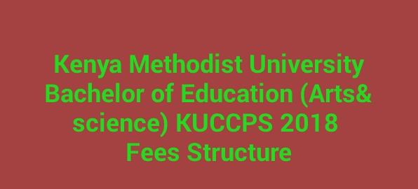 Fees structure 2018 Bachelor of Education kemu