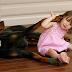 Ο σκύλος την άρπαξε και την πέταξε μακριά! Ύστερα όμως, ανακάλυψαν την τρομακτική αλήθεια…