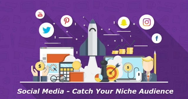 Social Media - Catch Your Niche Audience