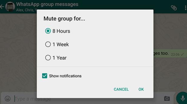 10 Trik Cara Menggunakan Aplikasi WhatsApp 2